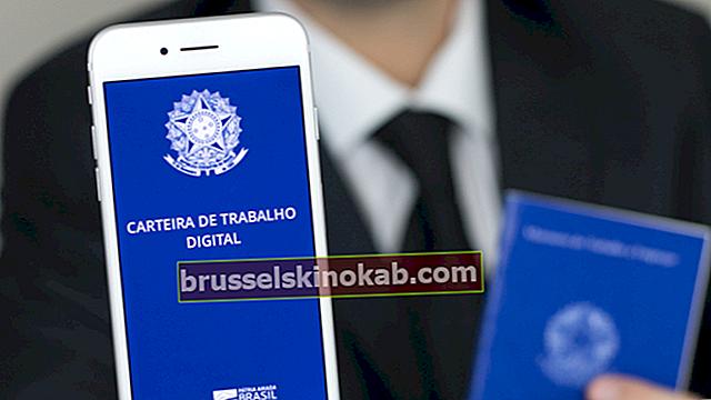 Digitalt arbetskort: hur man registrerar sig i mobilappen
