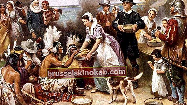 Thanksgiving Day: lær om oprindelsen og nysgerrigheden omkring datoen
