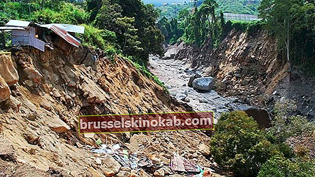 Jordskred: hvad man skal gøre og hvad man ikke skal gøre på disse tidspunkter