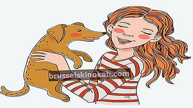 בדיחות של בעלי חיים: 6 צחוקים מובטחים!