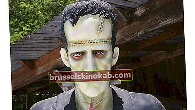 Teenagedrømmeren, der skabte Frankenstein