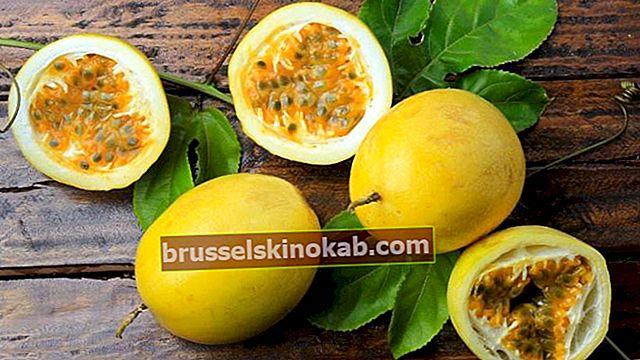 Upptäck hälsofördelarna med passionsfrukt