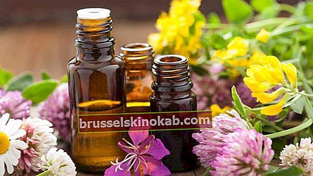 10 viktiga naturläkemedel att ha hemma