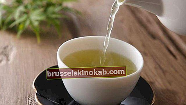 Ta grønn te for å gå ned i vekt og forbedre stoffskiftet