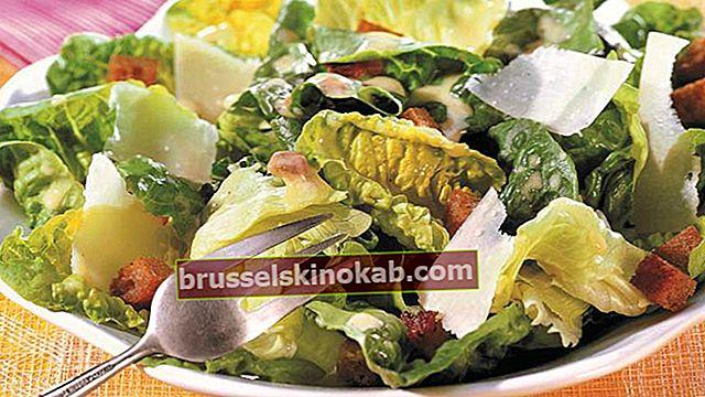 Caesar salat og 8 andre klassiske salater