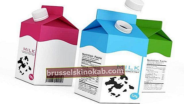 מלאכת קרטון חלב: 9 רעיונות יצירתיים ושימושיים