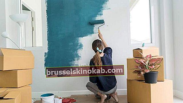 Sådan maler du væg: Tjek trin for trin